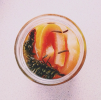 Grapefruit&SpruceInfusion_PurpleCarrotCleaning